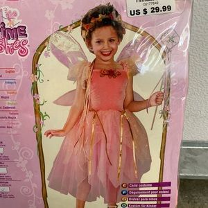 Rubies Storytime Wishes Pretty Pixie Fairy Costume